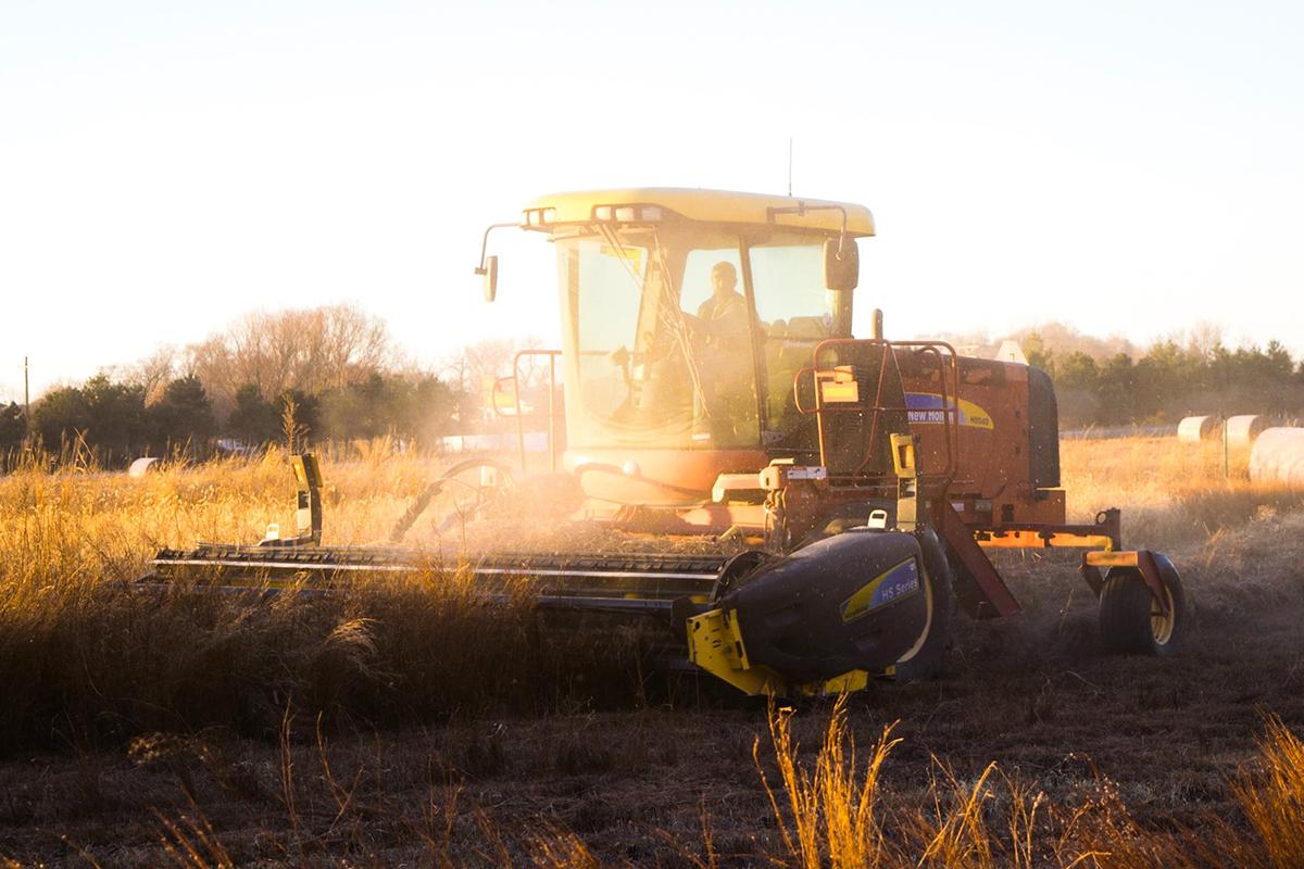 noah-buscher-agricoltura-4-0.jpg